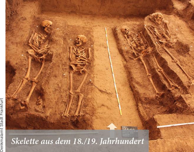Skelette aus dem 18./19. Jahrhundert