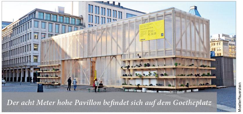Der acht Meter hohe Pavillon befindet sich auf dem Goetheplatz