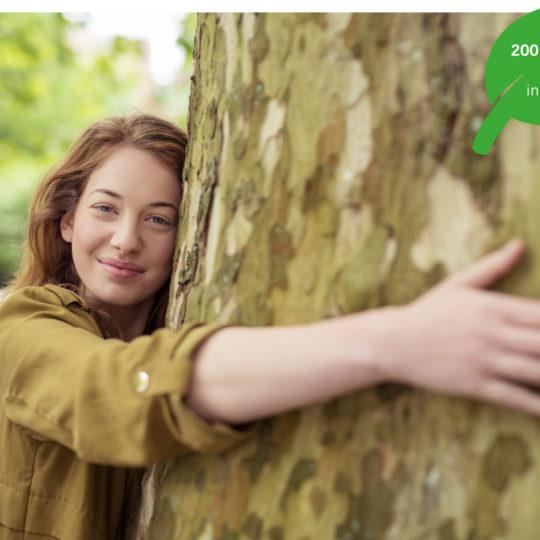 Unser Freund der Baum