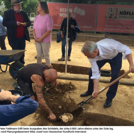 6800 Jahre alter Schädel gefunden